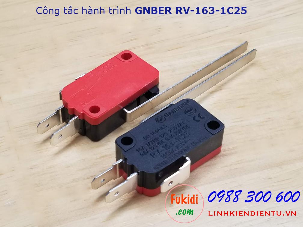 Công tắc hành trình GNBER RV-163-1C25 loại đòn bẩy dài