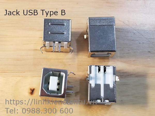 Đầu jack USB loại B (USB máy in)