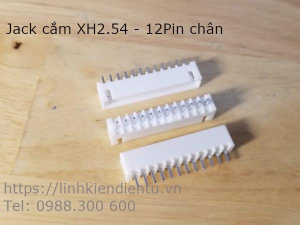 Jack cắm XH2.54-12P đực, 12 chân thẳng