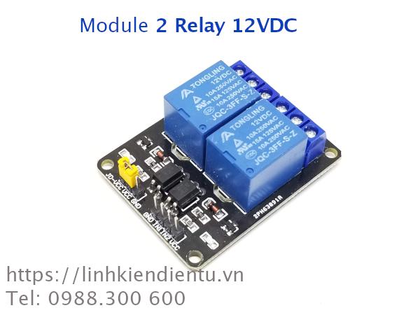 Module 2 Relay 12VDC